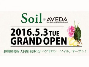 Soil-2016.5.3-s