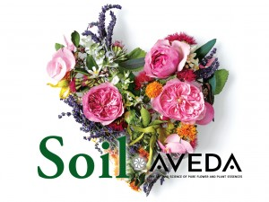 soil_aveda_image1